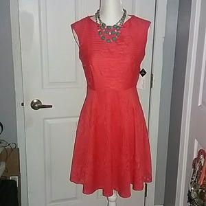 Studio 1 Orange Lace Dress, size 4, NWT
